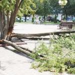 Негода паралізувала місто на чотири дні