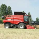 Бориспільщина жнивує: намолочено майже 30 тисяч тонн зерна
