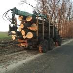 Обабіч дороги з Любарець вирубували дерева: депутат анонсував слідчі дії