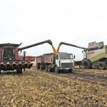 Найновіші технології і сучасна техніка: аграрні секрети успіху СТОВ «Любарецьке»