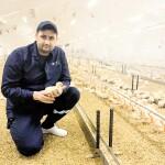 Ветлікар про якість курятини МХП: «Навіть у Європі визнають, що українське – краще»