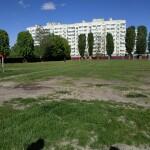 У Борисполі з'явиться мультифункціональний спортмайданчик