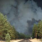Голова Луганської ОДА просить уряд визнати масштабні пожежі в області надзвичайною ситуацією державного рівня