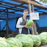 Дорого, але смачно: у Борисполі кілограм дині коштує від 15 до 30 гривень, а кавуна – 10
