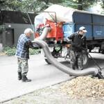 Швидко і цікаво: тепер листя у Борисполі збирають пилососом